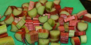 recetas de cocina hechas de ruibarbo